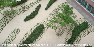 Freianlagen Finanzzentrum Aachen, 3+ Freiraumplaner